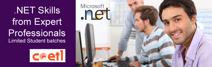 how to become a dot net developer